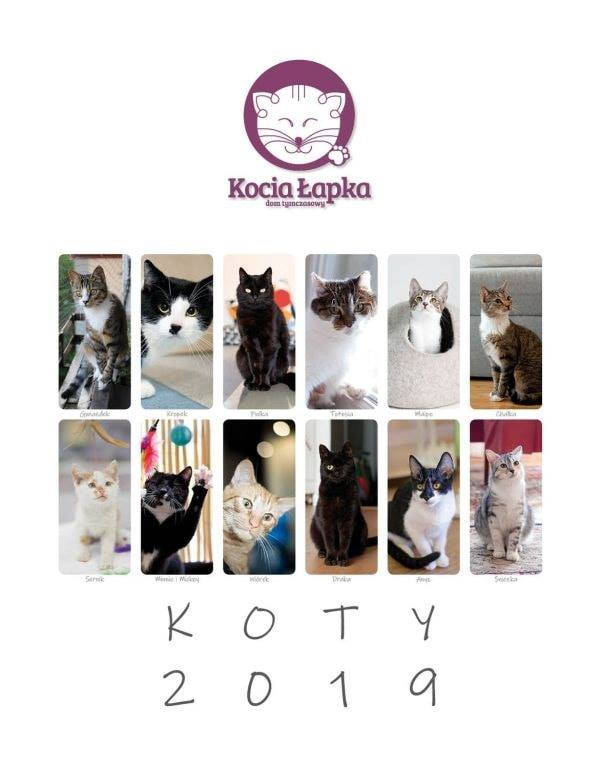 Charytatywny kalendarz DT Kocia Łapka 2019