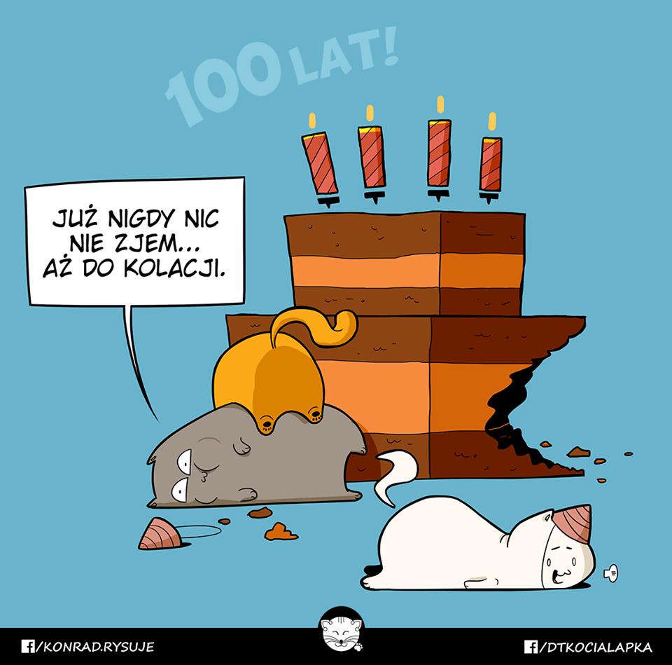 Urodziny Kociej Łapki