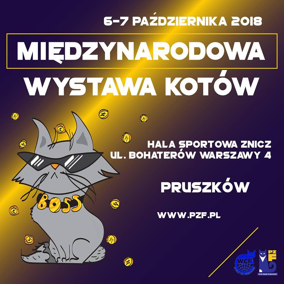 Międzynarodowa wystawa kotów w Pruszkowie 6-7.10.2018