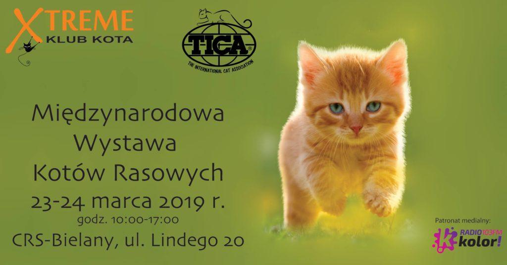 """Charytatywne stoisko na wystawie TICA – TICA show """"Let's Spring"""" – Hala Sportowa CRS-Bielany, 23-34 marca 2019 r."""