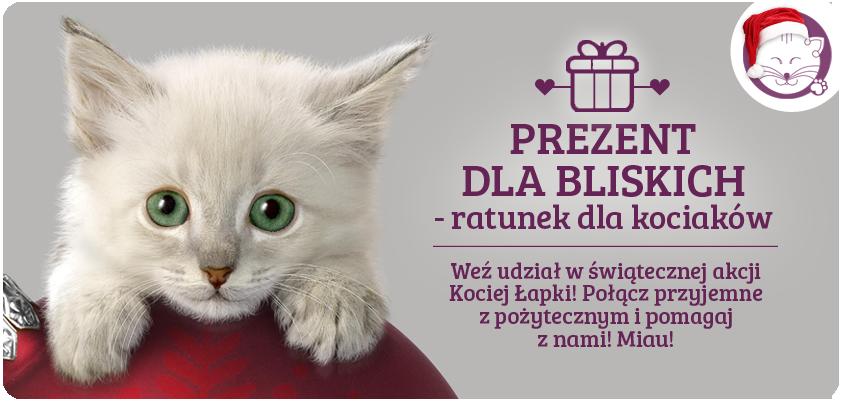 Prezent dla Bliskich – ratunek dla kociaków!