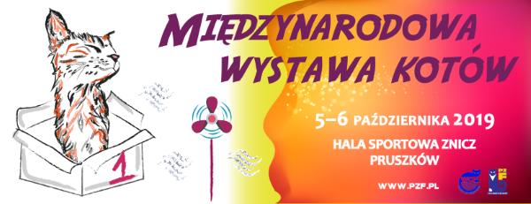 Wystawa kotów – Hala Sportowa ZNICZ w Pruszkowie – charytatywne stoisko – 5-6 października 2019 r.