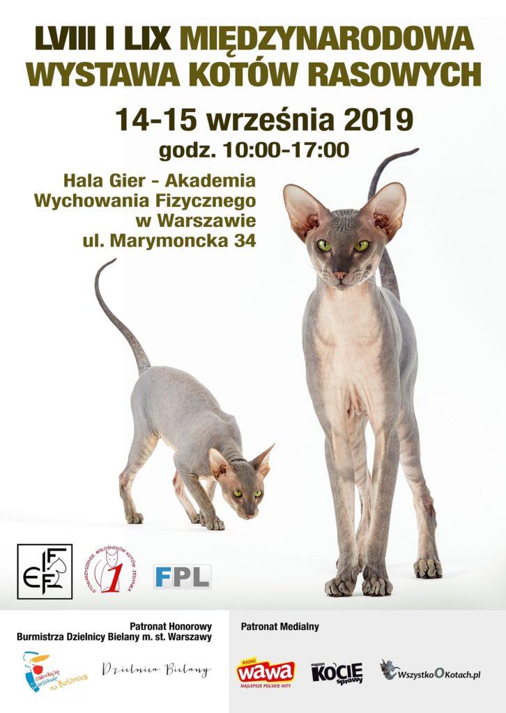 Wystawa kotów – Hala Gier AWF – charytatywne stoisko 14-15 września 2019