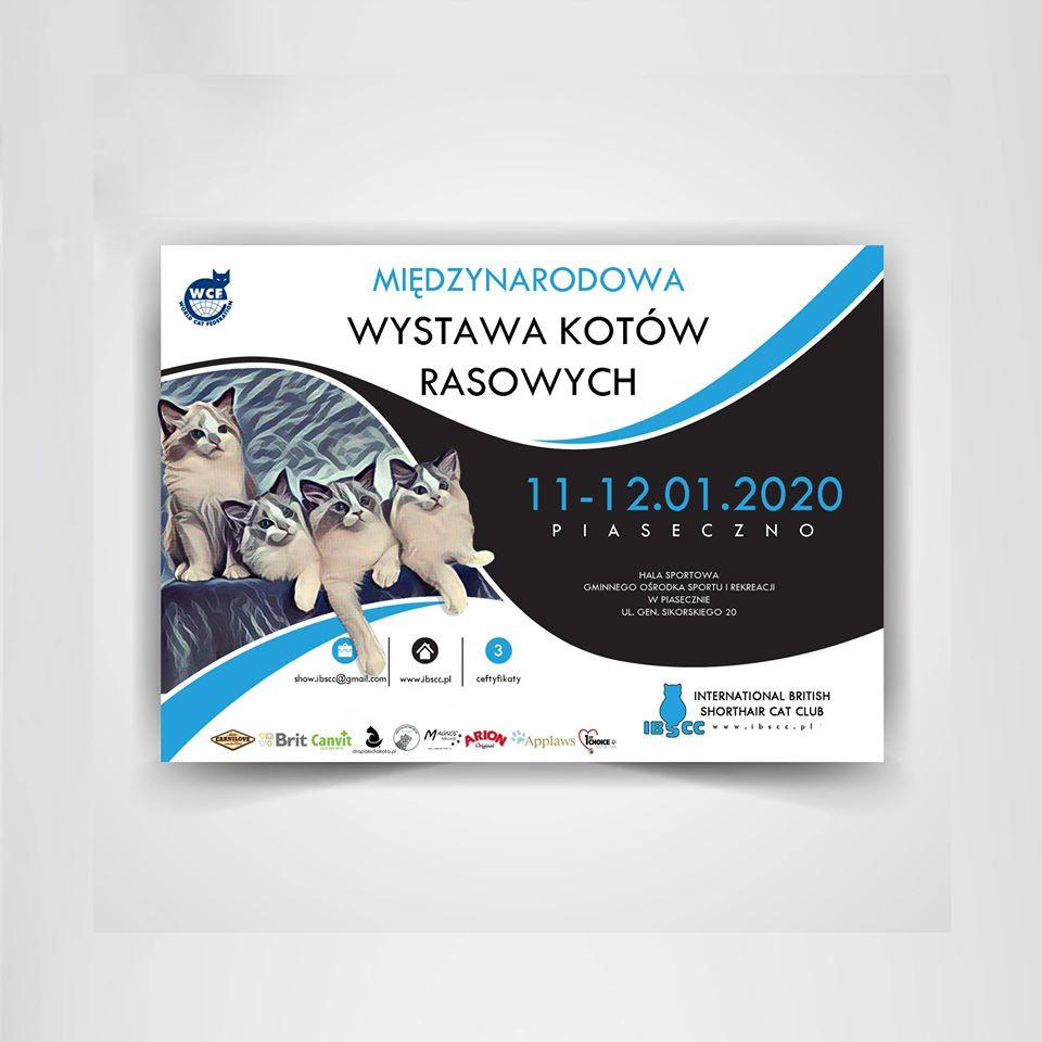 Wystawa Kotów Rasowych – Piaseczno – 11-12.01.2020 – stoisko charytatywne