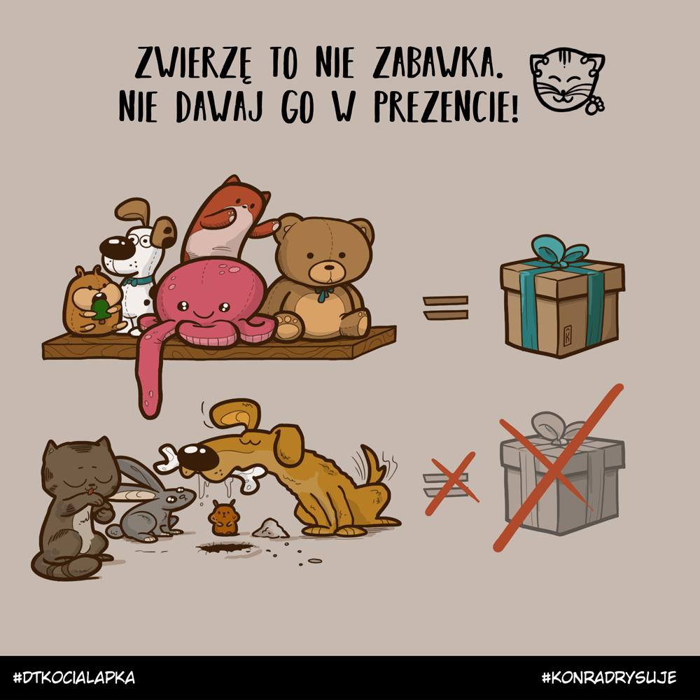 Zwierzę to nie zabawka. Nie dawaj go w prezencie!
