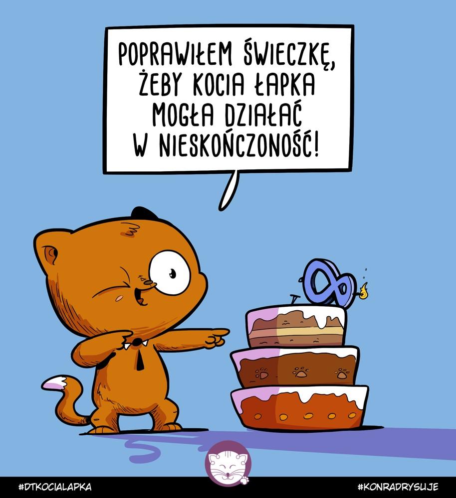 8 Urodziny Kociej Łapki